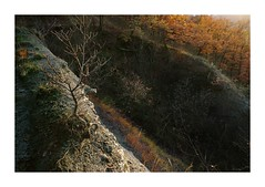 On the edge (GP Camera) Tags: nikond80 tamronsp1750 rocks rocce badlands calanchi trees alberi trunks tronchi branches rami leaves foglie fallenleaves fogliecadute light luce shadows ombre lightandshadows lucieombre lighteffects effettidiluce autumn autunno lateafternoon tardopomeriggio sunset tramonto sunsetlight lucealtramonto goldenlight lucedorata thebestyellow ethereal etereo textures trame silence silenzio quiet quiete calm calma allaperto vignetting whiteframe cornicebianca italy italia piemonte monferrato darktable gimp opensource freesoftware softwarelibero digitalprocessing elaborazionedigitale