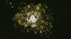 DSC_0315 (jose.paredes) Tags: glass vidrio botella old antiguo nikon sigma chile santiago luz light corona beer cerveza