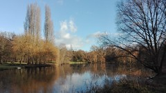 Parc de Morsang sur Orge en hiver (jmsatto) Tags: hiver parc morsangsurorge arbres étang essonne