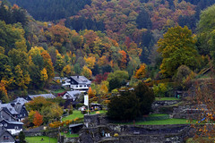 Autumn Monschau (廖法蘭克) Tags: monschau autumn germany canon 6d leica vacation relax frank photographer oldlens manuallens river mountain valley town oldtown meyeroptikgorlitztrioplan100mmf28v friends 德國 秋天 蒙紹 老鏡 手動對焦 手動鏡 meyeroptik