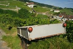 a trailer without a blockbuster (Riex) Tags: remorque trailer vineyard vignoble vineyards vignes ete summer riex lavaux village vaud suisse switzerland a900 amount 35mm f2 af minoltaamount minolta