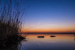 Pool of Dawn (@bill_11) Tags: pegwellbay weather naturereserve england kent places sunrise dawn reflection blue winter water sky sunlight contrails canon powershot g7xmkii mirror grass orange seaside