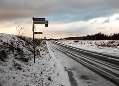 Roggenburger Weiher Winter 14 (noa1146) Tags: wegweiser schilder wandern dämmerung winter schnee roggenburg bayern