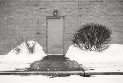 Door With No Handle (frntprchprss) Tags: door nohandle snow bush cinderblock wall mall winter jamesgehrt blackandwhite