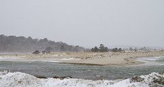 Winter Storm at Paine's Creek (brucetopher) Tags: storm snow water sea ocean bay tidal river tide surge wash rough stormy windy blow noreaster east eastern newengland beach snowing blizzard stormsurge surf wind gale erosion coast saltwater 7dwf