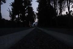 Favari_Giada_12