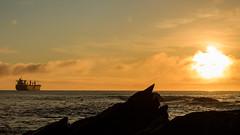 Fondeado en el atardecer (Jras Fotografas) Tags: sunset atardecer barco ship niebla valdivia anclado