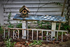 In the Garden (slammerking) Tags: wood metal vintage garden bench shadows decorative wroughtiron rusty birdhouse ivy trellis sunflower weatherd