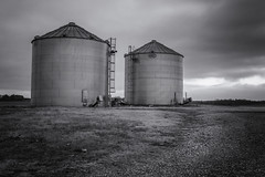 Rural West TN Silos (Elizabeth_211) Tags: blackandwhite bw monochrome farm tennessee silo jacksontn 24105mm 70d westtn sliderssunday sherielizabeth