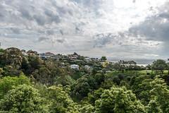 New Zealand 2016-225 (cadje) Tags: napier hawkesbay newzealand nz