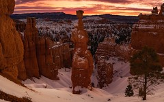 Hammer of Dawn (Darkness of Light) Tags: bryce canyon national park nps sunset point navajo trail thors hammer sunrise snow winter 17f utah zion arches canyonland capitol reef dawn dusk