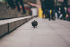Get lost! (Stefan (ON/OFF)) Tags: bird pigeon dove taube lowpov dof bokeh dephtoffield shallowdepthoffield depthoffield stairs public cologne dome domeplace trainstation eyes sonya7 sonya7m2 canonef7020028lisii
