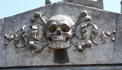 Skull and Crossbones (Craigs Travels) Tags: skull recoleta cemetery buenosaires argentina tillandsias epiphytes airplant skullandcrossbones crossbones