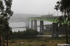 Galicia is diferent! (yagoortiz) Tags: tren 121 galicia viaducto ulla catoira pontevedra via puente alta velocidad ria de arousa