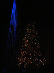 Christmas Tree in Darkness (Whimzelicious) Tags: christmasstree tree christmas lights christmaslights xmas xmaslights coloredlights