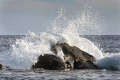 Cabo San Lucas (austinspace) Tags: cabosanlucas mexico vacation christmas