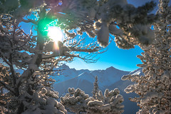 _DSC1350 (andrewlorenzlong) Tags: canada alberta banff national park banffnationalpark gondola banffgondola sulphurmountain sulphur mountain