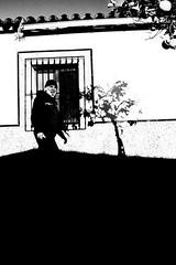 Hombre y árbol. (josmuoz88) Tags: hombre árbol luz sombra fernando cuevadelamora