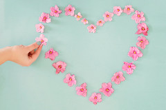 2/52 (1) Can't live without...Love (Teresa_R_) Tags: heart love hand flowers petals pink blue pastel flat lay still life stilllife