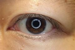 An Eye (Shinichiro Hamazaki) Tags: eye selfportrait 目 瞳 セルフポートレート