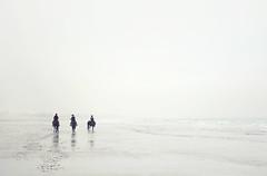 Horse riding Bracklesham Bay (Simon Verrall) Tags: brackleshambay eastwittering sussex january westsussex coast beach sandy cold winter horse horseriding selsey sea seaside seascape tide