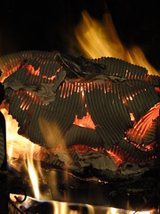 daily orange (nightcloud1) Tags: fire camino fireplace heating winter spring elements burning heat firewood