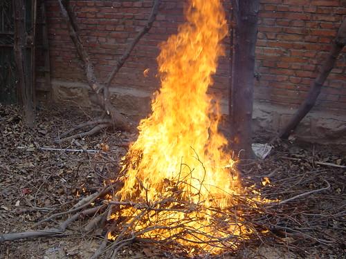 很久没见这样的火了。