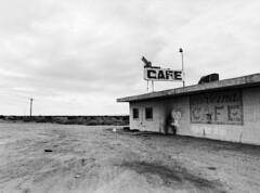 cafe (birdcage) Tags: california blackandwhite bw abandoned mediumformat cafe mamiya645 saltonsea