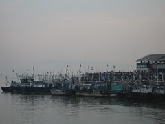 Ferry Wharf 014 (Sanjay Shetty) Tags: fish ferry fishermen wharf bhaucha dhakka