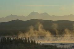 IMG_4280.JPG (jraiii) Tags: nature alaska deltajunction northpole