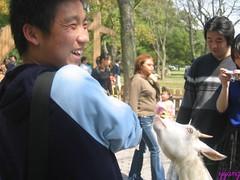 IMG_0031 (Havi Photo) Tags: zoo zoo shanghai  shz