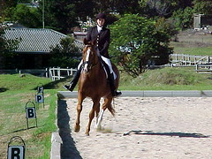 CVRC Dressage - Saturday 8 April 2006