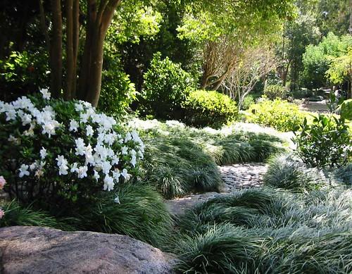Garden Design Nz