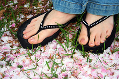 Toes in the Blossoms (jhary) Tags: autumn feet grass georgia cherry toes downtown 2006 flipflops april cherryblossoms firstfriday macon