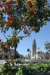 Balboa Park From Below the Planter (cwgoodroe) Tags: california park vacation favorite holiday flower water fountain pool animals architecture relax reflecting san sandiego weekend relaxing july diego fisheye sd balboa 31 balboapark sandeigo sfchronicle96hrs july312007 31july2007 50favorite