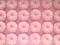Sakura (jam343) Tags: japan spring traditional sweets sakura wagashi  bestofpink