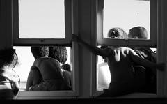 Na Barca (Felipe Correa.) Tags: people window rio brasil riodejaneiro pessoas barca pb janela paquet