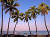Ke'ei Morning (konaboy) Tags: ocean beach sunrise palms hawaii kona 20870 keei