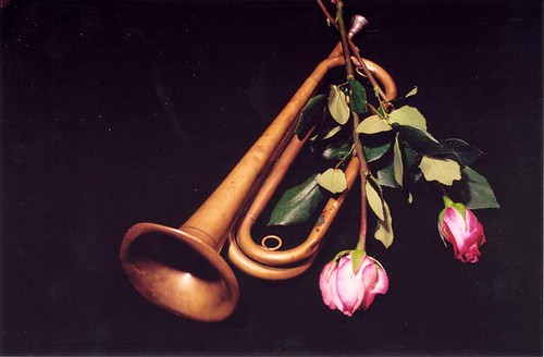 Bugle and Roses