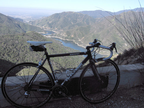 My Cannondale