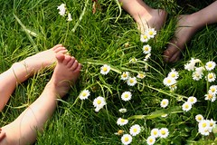 summer feet (bies) Tags: summer feet grass tag3 taggedout kids daisies children foot tag2 tag1 daisy utataspotlight iwannakisseachandeverytoe