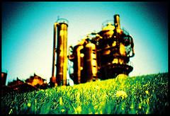 (a m e l i a) Tags: seattle park grass lomo xpro gasworks gasworkspark ilikegrass