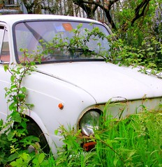 The art of decay (Lyowin) Tags: street stilllife white green grass car italia decay streetphoto catchycolor bigcalm humanless colorisaturi roscigno