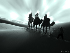 Travel to.... (Sergio_One) Tags: people monochrome sergio photoshop monocromo dunes personas morocco desierto marruecos camels deserted dunas camellos sergioone wwwretoquedigitalnet