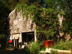 The Barn (Night Owl City) Tags: abandoned home barn newjersey decay farm nj warren former collapsed somersetcounty
