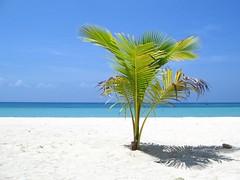 Solitude (wantet) Tags: travel blue sea white beach sand asia philippines cebu bantayan stafe wantet cebusugbo bluelist