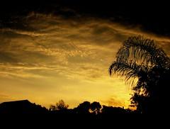 Forboding Sky