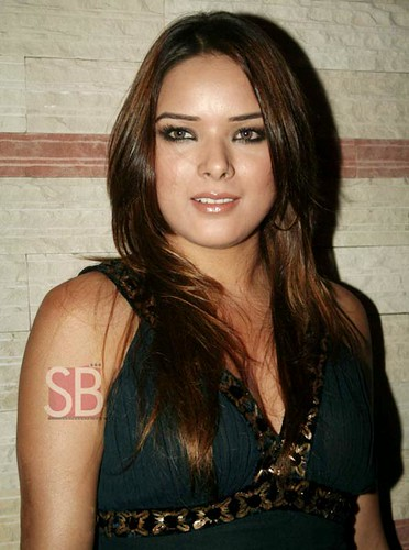 hot and sexy udita goswami, hot udita goswami in bikini, hot udita goswami wallpapers and photos, hot udita goswami boobs/breasts