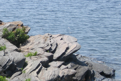 Explore the geology of the Canadian Shield at Killbear Provincial Park (photo by John Vetterli).