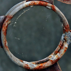 rusty ring (Leo Reynolds) Tags: canon eos 350d iso100 rust squaredcircle f56 70mm 0ev macrodecay hpexif groupmacrodecay grouprustycrusty 001sec sqrandom xratio11x sqset010 xleol30x